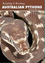Has anyone got an Oenpelli Python? - Aussie Pythons & S